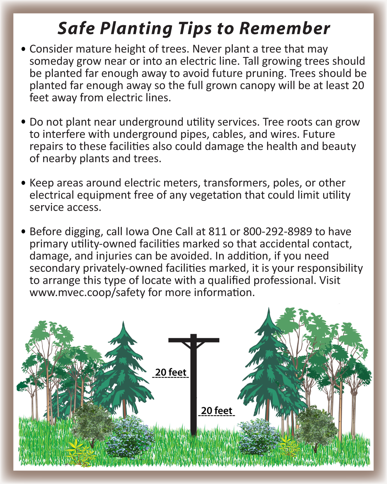 tree_planting_tips2.png
